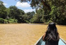 In to the jungle! / Een reis aan Azië is niet compleet zonder een bezoek aan de indrukwekkende natuur. Of het nu het regenwoud van Sumatra is of de dichte jungle van Borneo; een avontuur is het altijd! Ook in Sri Lanka en Cambodja vindt u nog ongerepte regenwouden en nationale parken.