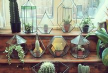 geometric glass