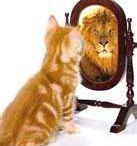 In 7 stappen naar meer zelfvertrouwen! / Onze tweedaagse training speciaal voor vrouwen die moeite hebben met het aanvoelen en aangeven van hun grenzen. Wordt het tijd dat jij jezelf meer centraal stelt en duidelijker je grenzen leert aangeven? Wil je daardoor meer energie hebben overhouden? Wil je je zelfverzekerder voelen en ook overkomen? Hoe fijn zou het zijn als je duidelijk maar toch respectvol leert communiceren?  http://www.werkgelukcoaching.nl/trainingen
