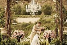 Wedding Trends 2015 / by Floral Design Institute