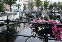 My Instagram | @elianeroest | Instagrambloggers.nl Amsterdam #solowheelparking