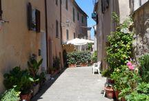 Magliano in Toscana / L'agriturismo Piana Arborello si trova a pochi minuti dall'incantevole borgo medievale di Magliano in Toscana caratterizzato dalle imponeti mura Aldobrandeshe e dalla splendida vista delle isole dell'Arcipelago Toscano.