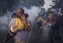 Foto Reportagem / by José Pinho