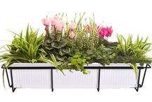Best Window Boxes for Plants-Flowers: Iron Wooden Vinyl / Here some of the best and beautiful window boxes have been collected and represented in this article. I sincerely believe that this article definitely help you in finding perfect window box for your house.