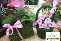 Moss Pocketbooks and Baskets / Check out our custom planted moss pocketbooks!