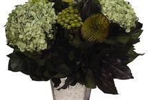 DOH Florals