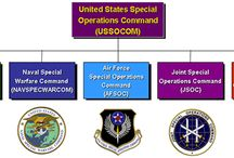 Special Operations Forces / Those serving our country in SOCOM- Army, Navy, Air Force, Marine Corps