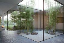 Interior Courtryard Garden