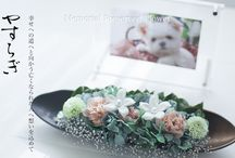 JFLA Funeral Flower Diploma Class