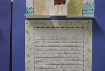 Writers' Workshop and Mini-lesson Ideas
