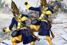 Sweden war