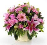 bungajabotabek .com / terima pesanan bunga untuk seluruh wilayah jakarta, bogor, depok, tangerang, bekasi, dengan layanan pesan antar yang bisa di andalkan..!!