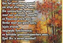 Bid in Afrikaans