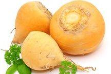 Gemüse - Wissen & Rezepte / Wissenswertes über Gemüse! Was drin steckt und wie man es am leckersten zubereitet.