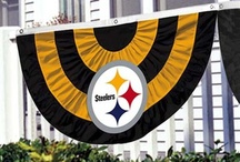 For the Sports Fan / Steelers, Capitals, Nascar