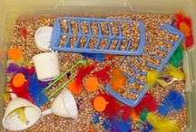 Sensory bin ideas / by Danielle McCumbers Myers
