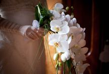 Orchids Bouquets / Orchids are great flowers for wedding bouquets!