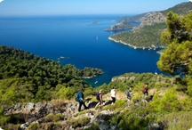 M/S Trippin: Activities during blue cruise / Activities on M/S Trippin luxury gulet during blue cruise