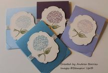 Stampin cards / by Clare Upchurch