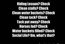 Equestrianisms