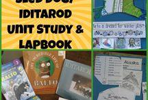 HS - unit studies