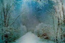Winter / by Tresia Mitchell