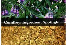 Herbs for the Skin / Herbs that help heal and soothe the skin. / by Senica - Skin Care Products