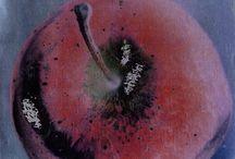 WINTER MEMORIES / Popdam Magazine Issue 10 WINTER MEMORIES photos & fine art: tamira swan tamiraswan@wordpress.com