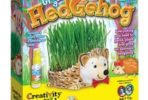We <3 Hedgehogs / Hedgehogs are so cute and fun that we decided to create a kit focused specifically on them. Grow a Hedgehog is a trendy garden craft that everyone will <3. Please note: Creativity for Kids makes every effort to find the original post. If you would like the pin removed, please e-mail us at socialmedia@fabercastell.com.
