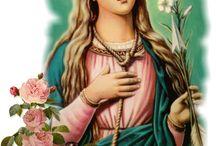 The Beauty of my Catholic Faith...
