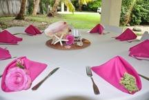 Bright Colors  Islamorada Weddings / Wedding decor ideas for bright colored weddings in Islamorada setups.