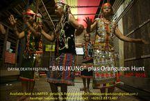 INDONESIA TRIP ADVISORS