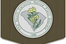 South Carolina Native Plants