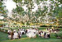wedding  / by Marisa Iannaccone