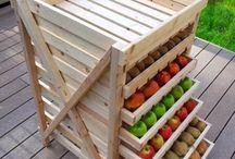 gyümölcs tárolás