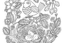 Coloring pics / Designs to color
