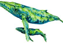 whales / by Patricia Means Sittenauer