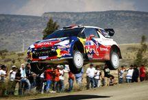 Rally world / World Rally
