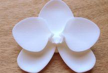 MONOCIRCUS : 3D Designer Style