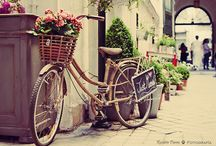 Favorite Places & Spaces / by Jeanine Egbert