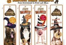 Happy Halloween Ideas / Ideas for Halloween, free fun downloads, no carve pumpkins, carving pumpkin for kids, DIY costumes, school teachers costumes, Halloween food ideas, kids craft ideas
