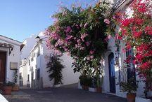 Bedar Village / The whitewashed hillside village of Bedar lies in the foothills of the Sierra de los Filabres mounatin range in Almeria Province, Andalucia, Spain.  http://choose-almeria.com/village-guide-bedar.php