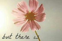 Το λουλούδι
