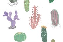 Cactus love / by Alaa Balkhy