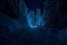 Landscapes — winter