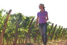 Vineyard Journals