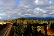 Clingman's Dome / by Visit Gatlinburg