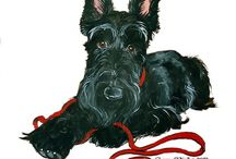 Scottish terriers / by Linda Rutherford