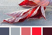 Kerstin Color Paletten