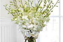 Flowers / Design ideas for flowers